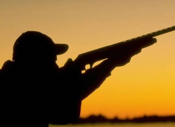 Стрельба в полевых критериях